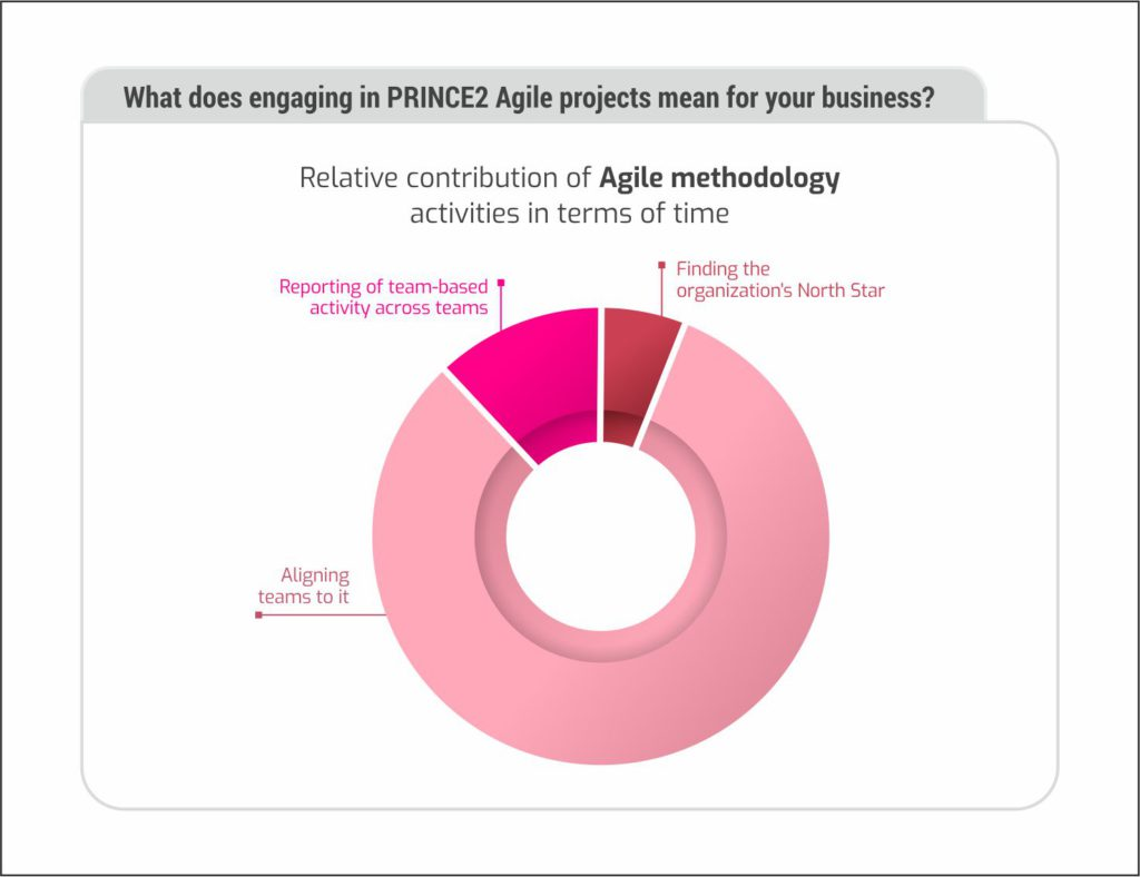 Relative contribution of Agile activities in terms of time